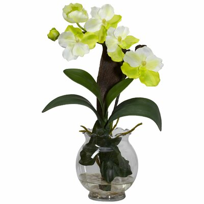 Nearly Natural Mini Vanda with Fluted Vase Silk Flower Arrangement in White