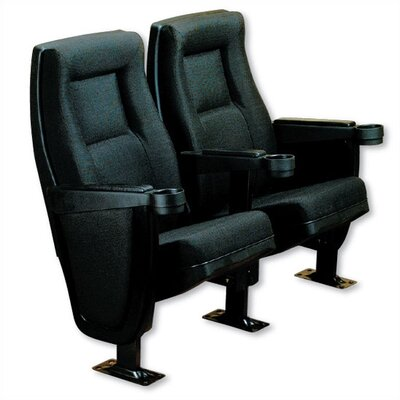Bass Contour Row of Two Movie Theater Chairs
