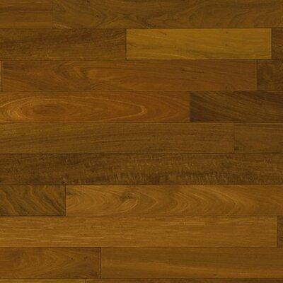 2 5 8 solid hardwood brazilian walnut flooring wayfair for Unfinished brazilian walnut flooring