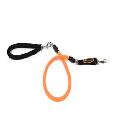 Bergan Pet Products Low Impact Dog Leash