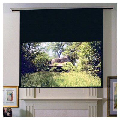 Draper Ultimate Access/Series E Projection Screen