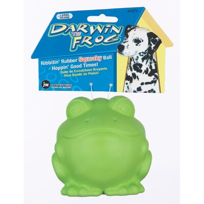 Darwin The Frog Dog Toy