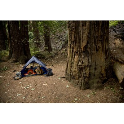 Grand Trunk Funky Forest Tarp Hammock