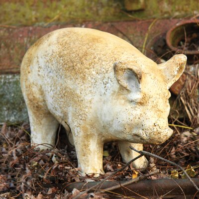 Resin Pig Outdoor Decor | Wayfair