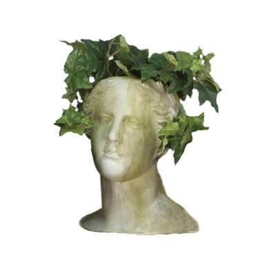 <strong>OrlandiStatuary</strong> Venus Head Planter
