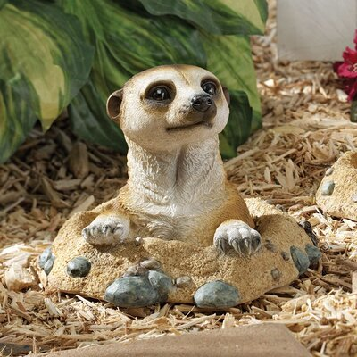 Design Toscano Kalahari Meerkat Out of Hole Statue