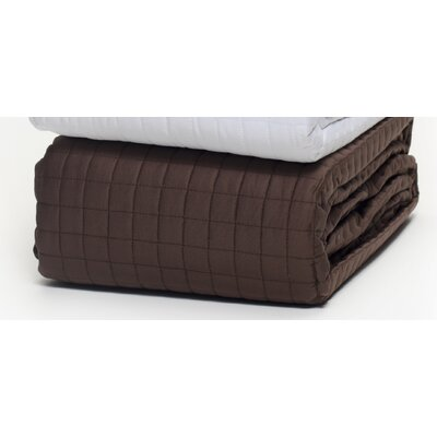 Wildon Home ® Quilted Coverlet