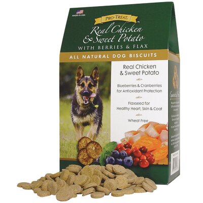 Gimborn Pet Specialties All Natural Dog Biscuits Dog Treat