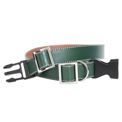 Large - Extra Large Dog Collar