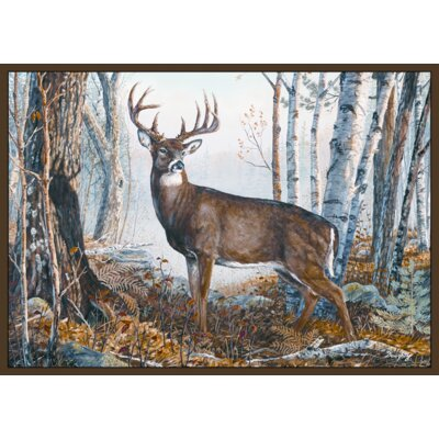 Custom Printed Rugs Wildlife Whitetail Novelty Rug