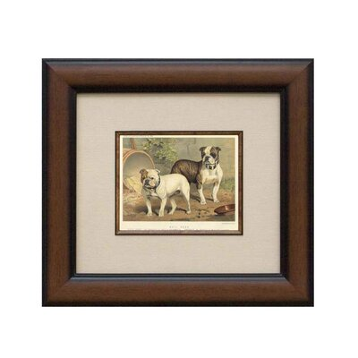 <strong>Phoenix Galleries</strong> English Bulldogs Framed Print