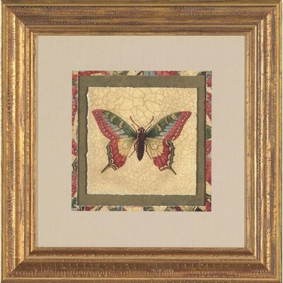 Crackled Butterfly I Framed Print
