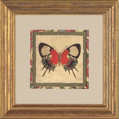 Phoenix Galleries Crackled Butterfly III Framed Print
