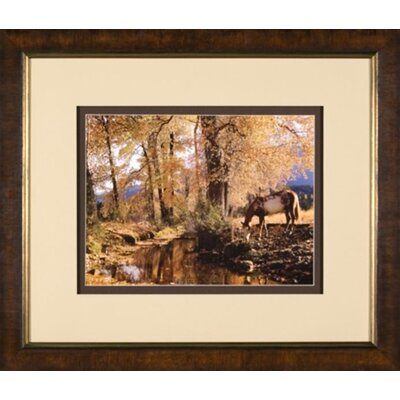 Phoenix Galleries Fall Color Framed Print