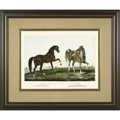 Trotting Stud 1 Framed Print
