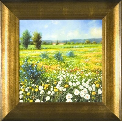 Summer Meadow 1 Framed Print