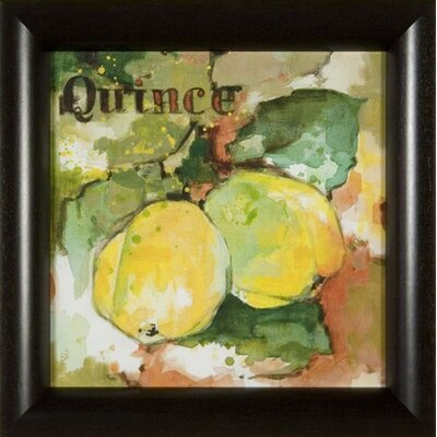 Phoenix Galleries Quince on Canvas Framed Print