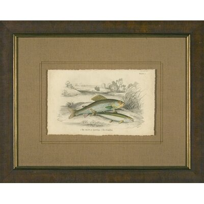 Phoenix Galleries Grayling Framed Print