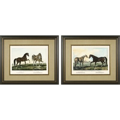 Trotting Stud Framed Prints
