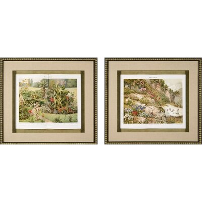 Phoenix Galleries Garden Plants Framed Prints