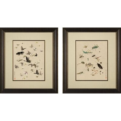 Phoenix Galleries Insects Framed Prints