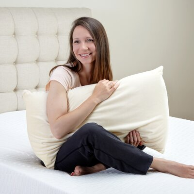 Classic Brands Embrace Latex Pillow
