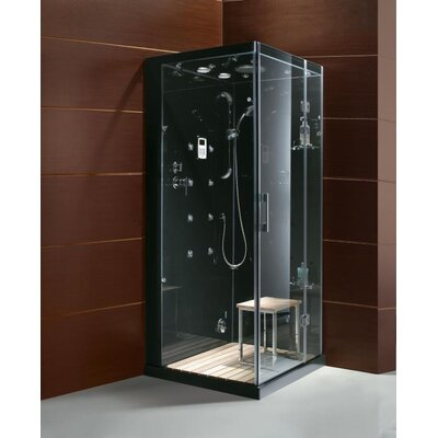 Steam Planet Corp Personal Pivot Door Steam Shower