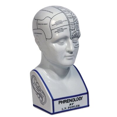 Authentic Models Phrenology Head