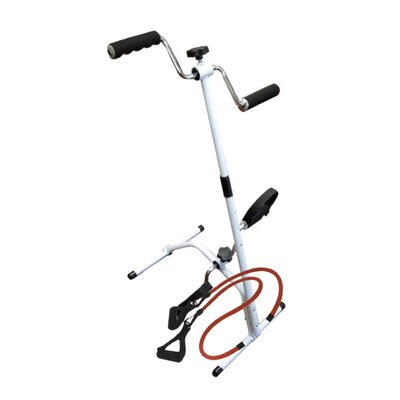 Total Body Mini Exercise Bike Wayfair