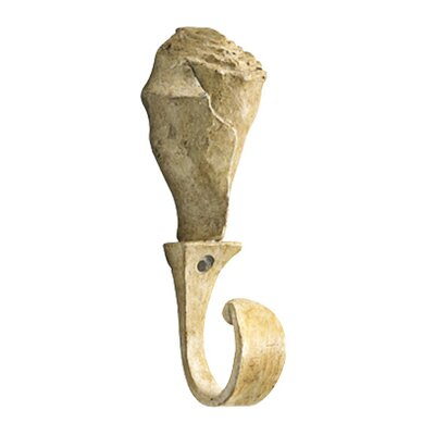 Whelk Shell Coat Hook