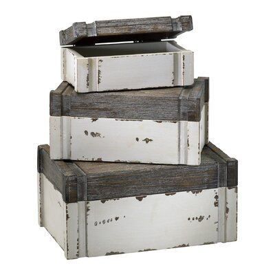 Cyan Design Alder Boxes in Distressed White and Gray