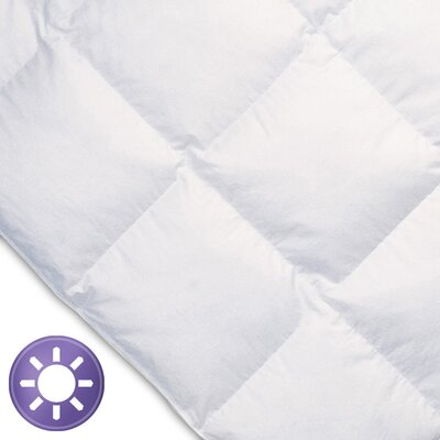 Ogallala Comfort Company Monarch 700 Hypo-Blend Southern Down Comforter