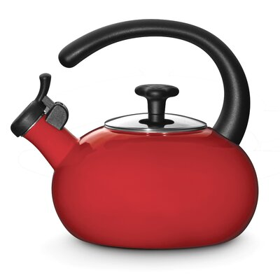 Rachael Ray Whistling Tea Kettle