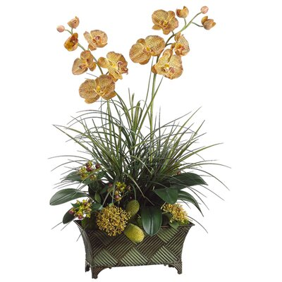 "Tori Home 35"" Moss Ball and Orchid Arrangement with Metal Container"