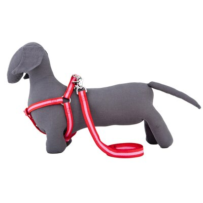 Bronte Dog Harness