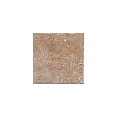 "Interceramic Montreaux 6"" x 6"" Ceramic Wall Tile in Brun"