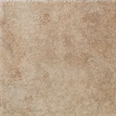 "Marazzi Safari 12"" x 12"" Floor Field Tile in Serengeti"