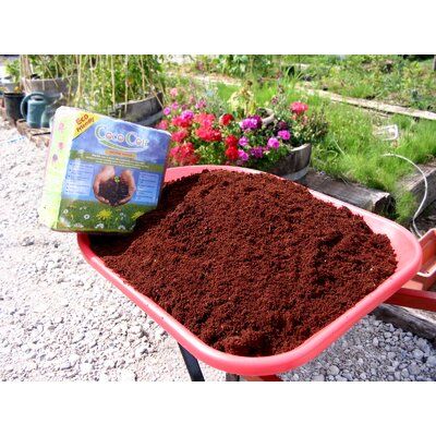 Nature's Footprint Coir Brick (250g)