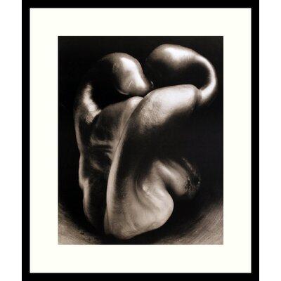 Amanti Art 'Pepper No. 30' by Edward Weston Framed Photographic Print