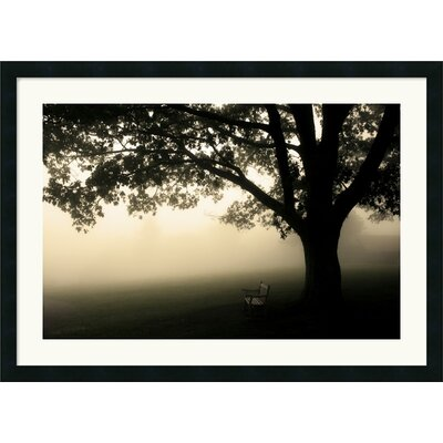 "Amanti Art Shenandoah by Andy Magee, Framed Print Art - 26.19"" x 36.19"""