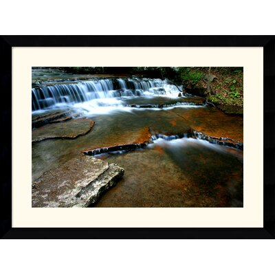 "Amanti Art Collins Creek by Andy Magee Framed Fine Art Print - 28.62"" x 38.62"""