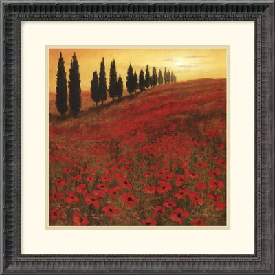 "Amanti Art Poppies by Steve Thoms Framed Art Print - 18.18"" x 18.18"""