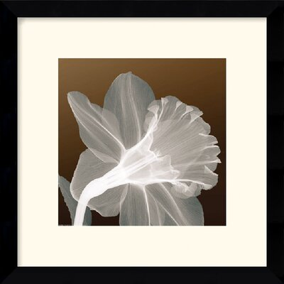 "Amanti Art Ruffled Elegance Framed Art Print - 13.12"" x 13.12"""