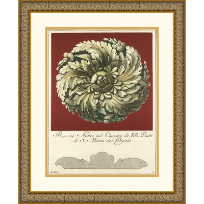Amanti Art Rosone Antico IV Framed Art Print by Guerra
