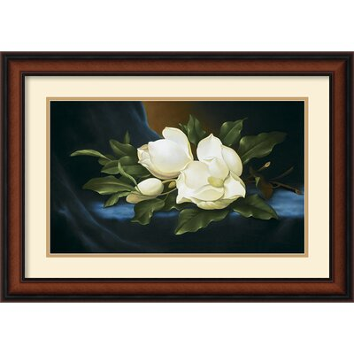 Magnolias Framed Print by Paul Cordsen