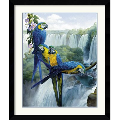 Amanti Art Iguazu Framed Print by Gabriela Ezcurra