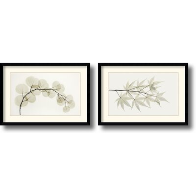 Amanti Art Eucalyptus and Japanese Maple Framed Print by Albert Koetsier (Set of 2)