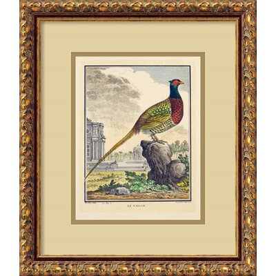 Amanti Art The Pheasant (Le Faisan) Framed Print