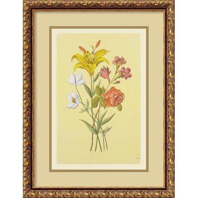 Amanti Art Botanical Bouquet IV Framed Painting Print