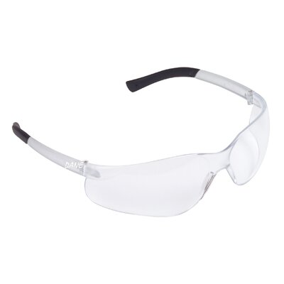 Dane Bifocals Safety Glasses (1.0 Diopter)